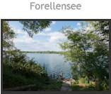 Forellensee